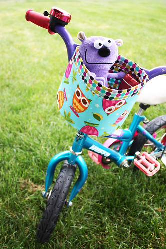 bikebucketpic
