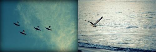 B2B:Flight