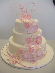 CAKE - New wedding design (CAKE Chester) Tags: pink wedding party cake blossom ivory celebration chester 3tier