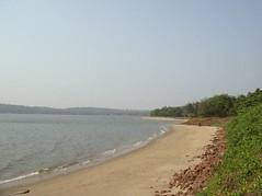 30th ISTS會場旁的沙灘。圖片來源: 海洋生態暨保育研究室