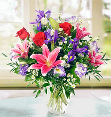 Flowers Delivery Houston (All Occasions Florist) Tags: thanksgiving birthday christmas flowers wedding rose