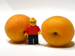 162of365[NTR23] (ntr23) Tags: fruit project lego first apricot 365 minifig everyday aolm ntr23 oneobject365daysproject