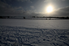 Miles and miles of snow (Ottobottle) Tags: trees winter horses snow ice countryside frozen lowlight sheep britain fields wintersky 2010 lowsun iceworld hedges stiles hedgerows winterclouds frozenfields