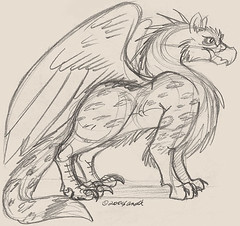 8.25.08 - Thy Gryphon Sketch
