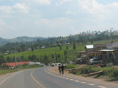 Damarose General Store (aaron.knox) Tags: africa road field store highway tea kenya farm plantation curve fromacar kisii pedestiran