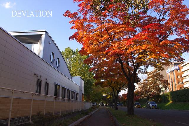 2010'10 Hokkaido Univ-5