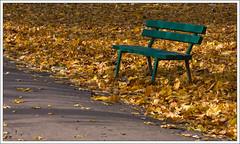 Golden autumn (ekropka) Tags: park autumn leaves yellow gold golden poland polska krakw cracow jesie ty krakoff zoty canon40d ekropka greenbenchawkalicieparkdecjusza