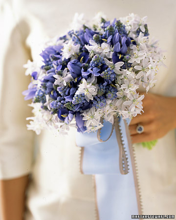mswed_blue and white1