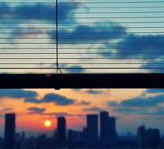 ==== (Violet Kashi) Tags: city sunset sky window silhouette skyline clouds telaviv dof blinds