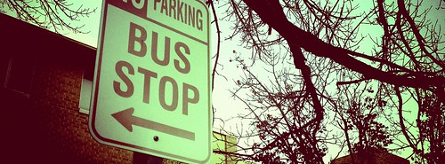 Are you waiting for the bus?