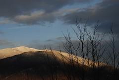 8g09panarottanevetramontomigazzone (El Salvanel) Tags: winter italy alps tree italia nuvola cielo neve albero inverno alpi luce trentino bosco valsugana lagorai panarotta bosentino migazzone