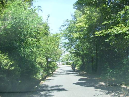 尾道市向島 高見山 山頂の画像 16