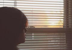 287.365 (lor.rain.e) Tags: light sunset sun window girl hair shades blinds 365 project365 365days
