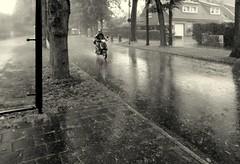 What a day! (Bernhardt Franz) Tags: motorcycle motorrad motorbike bike moped day rainy weather storm shower schauer dauerregen street wet trees pane rainwear helmet helm regenkleidung lamp building
