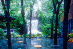 Oasis in the heart of the city (Leguman vs the Blender) Tags: manhattan midtown newyork nyc