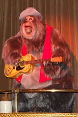 Big Al (PirateTinkerbell) Tags: show bear music west wednesday march big al orlando nikon singing theatre florida song stage katie magic bears country kingdom disney disneyworld 09 sing western fl 311 wdw dslr waltdisneyworld animatronic pioneer 2009 wildwest songs mk magickingdom frontier jamboree countrybears 309 frontierland orlandofl oldwest bigal march11 orlandoflorida countrybearjamboree d40 31109 disneyparks nikond40 32009 march2009 march112009 disney2009 waltdisneyworld2009 wdw2009 3112009 piratetinkerbell disneyparks2009 wednesdaymarch112009