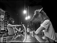 A Horse walks into a bar and the Beartender says... (Chad Coombs) Tags: art photography photo chad fine photograph coombs unscene unsceneart