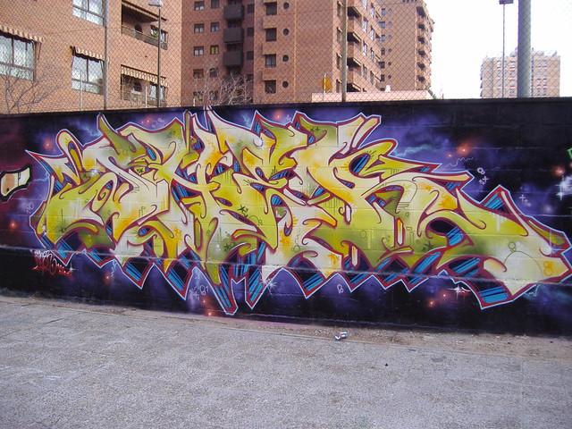 zaragoza sher2007
