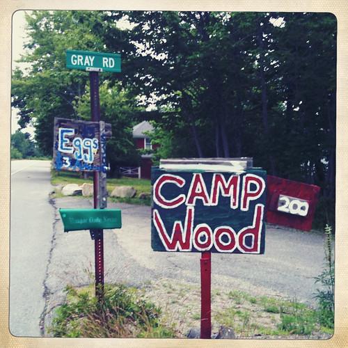 camp wood (eggs)