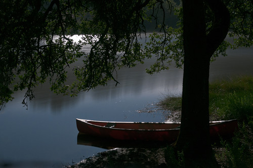 Canoe in the Moonlight