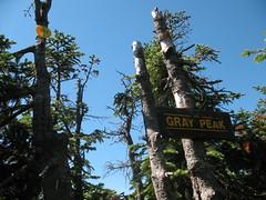 Gray Peak 036