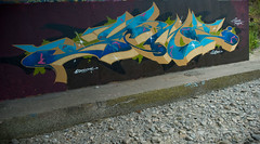 Meezy (Scotty Cash) Tags: canada vancouver graffiti bc 2010 sueme 9lives wwwsuemenowcom