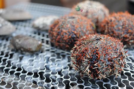 烤馬糞海膽