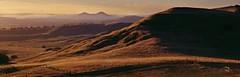 Mansfield-High-Country-Victoria (145) (Mansfield High Country) Tags: adventure jamieson horseriding snowskiing mtbuller craigshut lakeeildon bonniedoon merrijig howqua 4wdriving goughsbay manfromsnowyriver victorianhighcountry highcountryhorses mansfieldhighcountry mtbikeriding