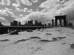 Brooklyn Bridge (TWielenga.NYC'10) Tags: city nyc newyorkcity urban panorama ny newyork skyline america buildings centralpark bronx timessquare brooklynbridge empirestatebuilding empirestate statueofliberty amerika bigapple newamsterdam nieuwamsterdam vrijheidsbeeld newyorkpanorama capitaloftheworld hudgecity