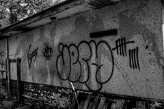 Tag wall (S.Vegas) Tags: street vegas canada art vancouver canon graffiti open 5 july surrey dot fluid brake dslr ix 2010 jerm eos40d svegas