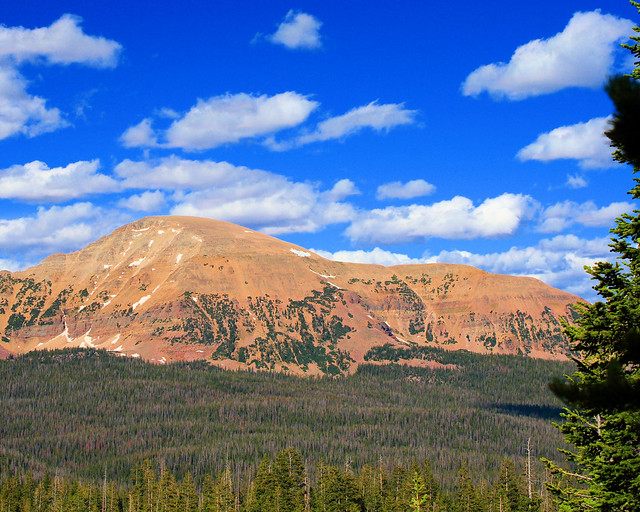 8x10 Uinta Mountains IMG_9561