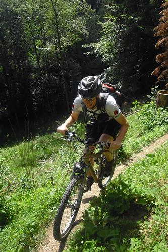 Schwarzwald Juli 2010