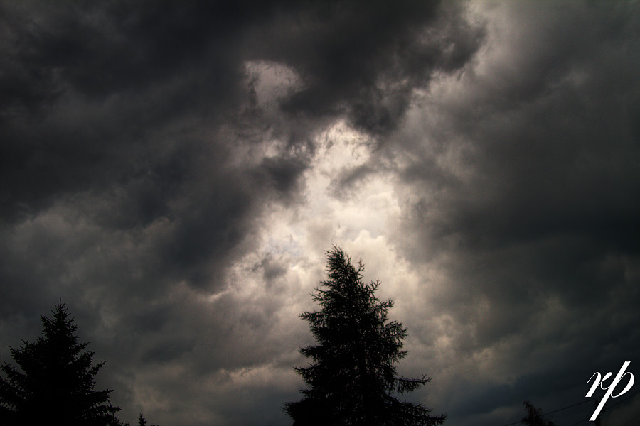 ~ 193/365 Summer Storm ~