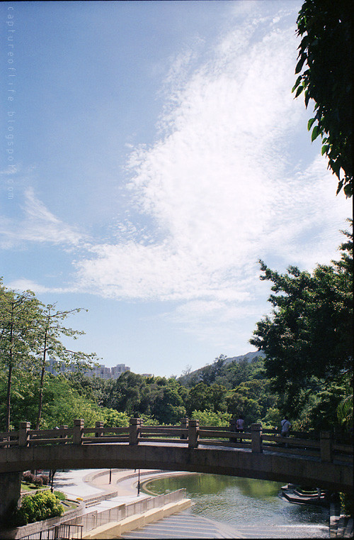 Super-Takuma 35/2