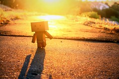 . (willycoolpics.) Tags: sunset orange golden dof action hour figure picnik danbo revoltech danboard haventseentesungetsoorangeinalongtime thiswasatmygrandmashouse