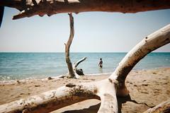 , (Benedetta Falugi) Tags: analog film beach summer benedettafalugi autaut tuscany wwwbenedettafalugicom believeinfilm analogphotography
