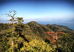 Mount Misen - Japan (` Toshio ') Tags: world city trees orange mountain green heritage water japan forest landscape asian island japanese islands bay harbor high asia cityscape hill hiroshima miyajima valley cablecar nippon nihon ropeway floatingtorii toshio mtmisen mountmisen islandhiroshima floarting toriibuddhabuddhistshrine bayitsukushimaunesco sitemiyajima