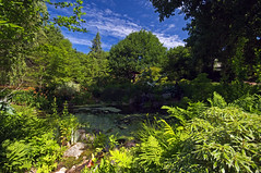 The Pond View (Property#1) Tags: pond pentax frogs k20d citrit sigma1024mm annapolisroyalhistoricalgardens