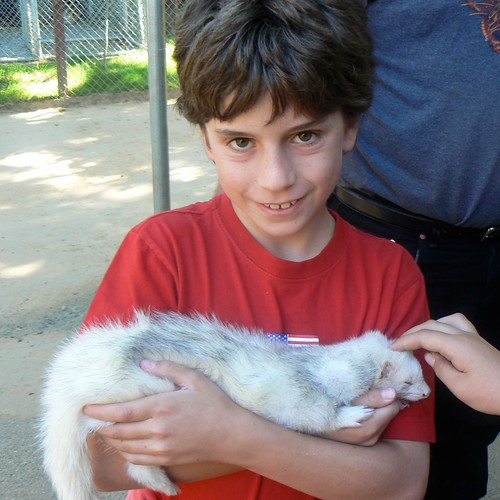 Gage with baby ferret