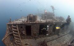 SS Thistlegorm (Lea's UW Photography) Tags: underwater redsea egypt fins thistlegorm unterwasser magicfilter tokina1017mm canon7d leamoser