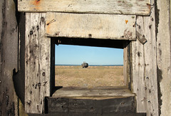 Dungeness composite (monkeymillions) Tags: blue sky cloud sun landscape space empty shingle dungeness scrub fifteen dungenessdaytrip