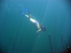 IMG_8765 (Geppi) Tags: lake swimming germany underwater diving freediving apnea apnoe breathhold