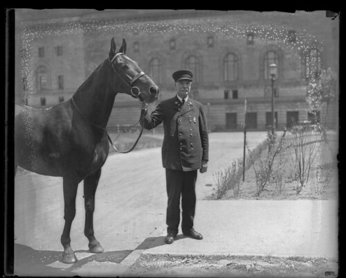 Police officer and horse