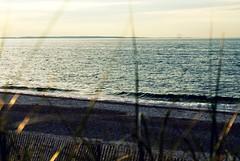 Sandwich Beach