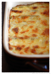 cardoons-with-bechamel-sauce© by haalo