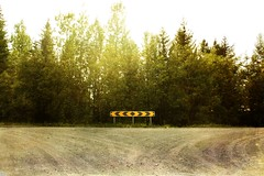 Forkroads (Ruslabox) Tags: road wood trees light texture sign turn forest way fork right textures left textured