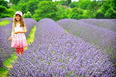 Happy! (Simone.London) Tags: uk flowers trees light summer flower green girl smile field hat forest pose happy kent nikon warm colours simone purple bright wind hellokitty bees daughter young lavender tourist bee curly honey heat campo sorriso fiori sole felice api scent cappello mayfield plantations lavanda bambina d90 vestito piantagione milele 100commentgroup gagazzina