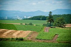 Asahikawa-100725-18