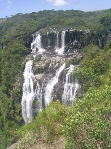 Cascata Tigre Preto