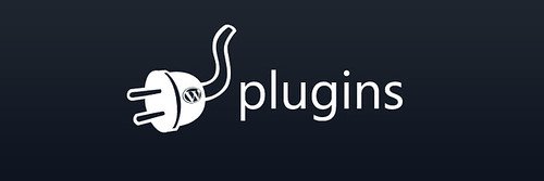 WordPress plugins can dramatically increase the value of your blog.  But which ones should you pick?